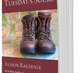 Image of Tuesday's Socks Book